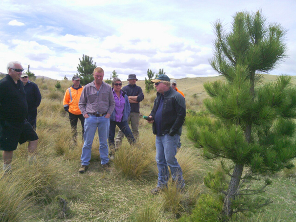 Marty Grounds of Groundspray Environmental Weed Control instructs participants on wilding pine control methods at a 2014 ORC field day near Naseby