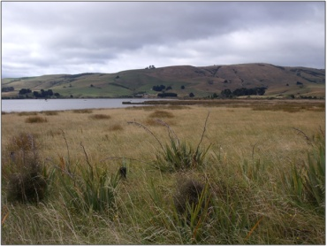 Catlins River Wetland (March 2010)