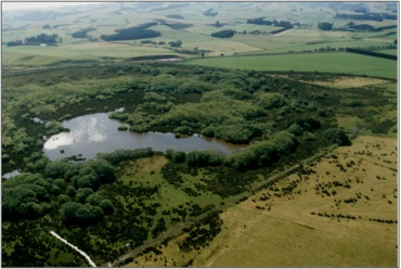 Lake Tuakitoto Wetland (September 2001)