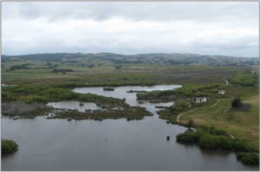 Lake Tuakitoto Wetland (February 2009)