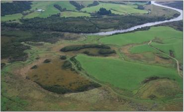 Image result for tahakopa river bogs