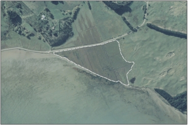 Aerial View of Papanui Inlet Saltmarsh (March 2006)